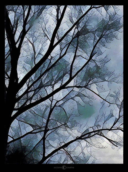 Photograph - Misty Tree by Tim Nyberg