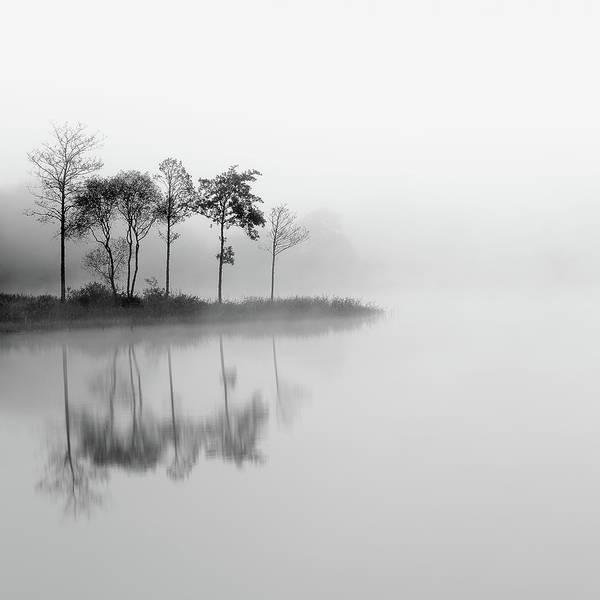Photograph - Misty Trees - Loch Ard by Grant Glendinning