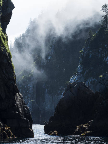 Photograph - Misty Valley by Ian Johnson