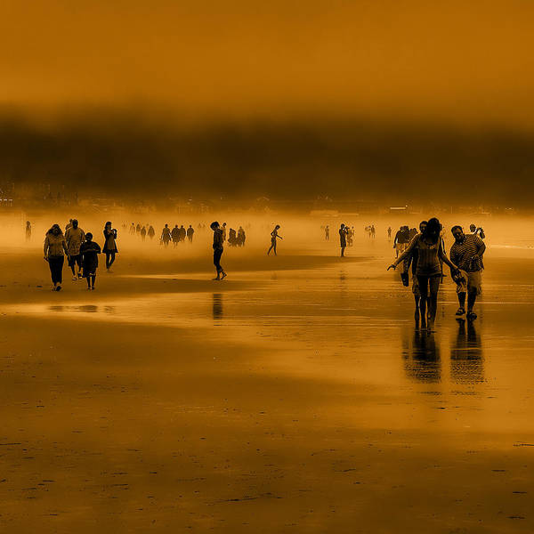 Photograph - Misty Walk by David Patterson