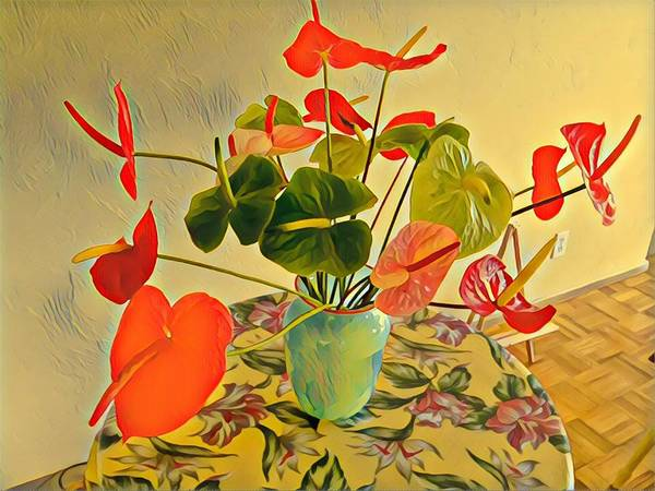 Mixed Aloha Anthuriums Matisse Art Print
