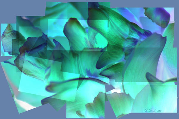 Photograph - Mixed Greens by Donna Bentley