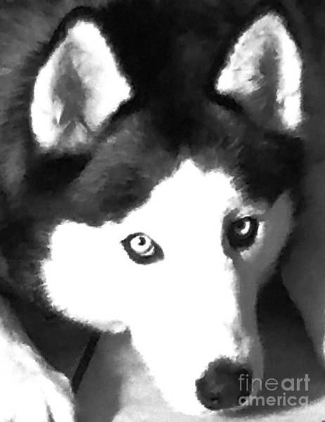 Husky Mixed Media - Mixed Media Expressive Siberian Husky A40417 by Mas Art Studio