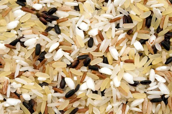 Photograph - Mixed Rice by Fabrizio Troiani