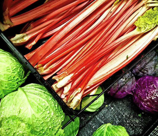 Photograph - Mixed Vegetables by Robert Knight