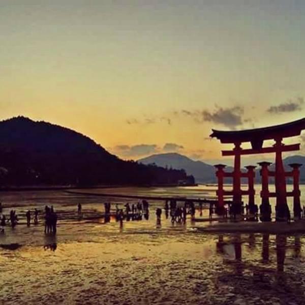 Strong Wall Art - Photograph - Miyajima Sunset by Nori Strong