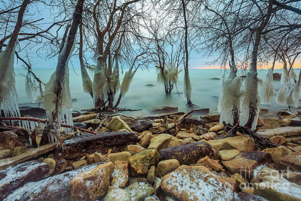 Wall Art - Photograph - Mke Ice Jungle by Andrew Slater