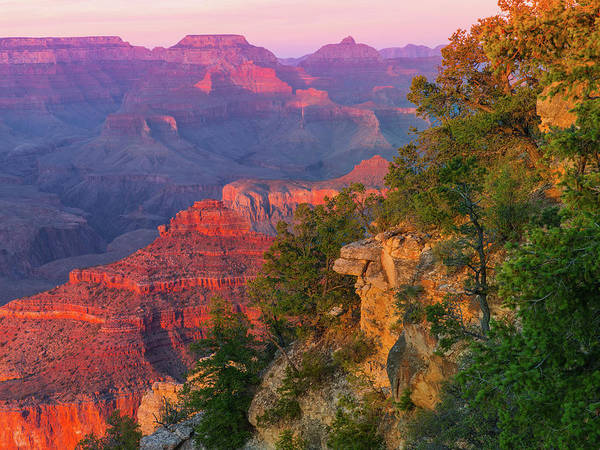 Grand Canyon Photograph - Canyon Dusk by Mikes Nature