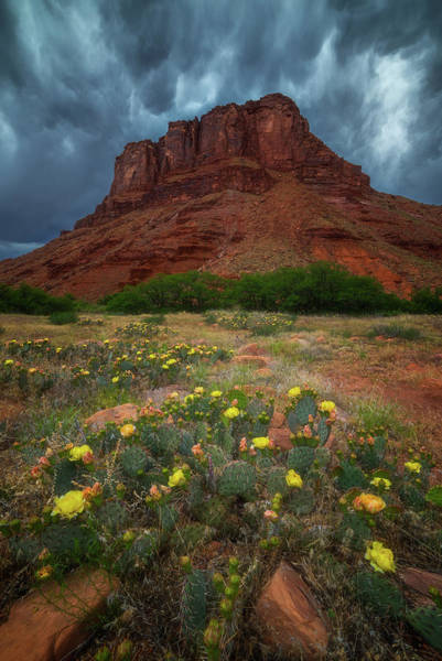 Photograph - Moab Summer Storm by Darren White