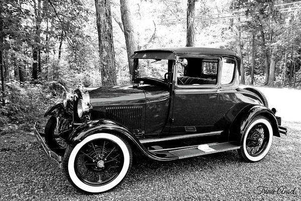 Photograph - Model A In Black And White by Trina Ansel