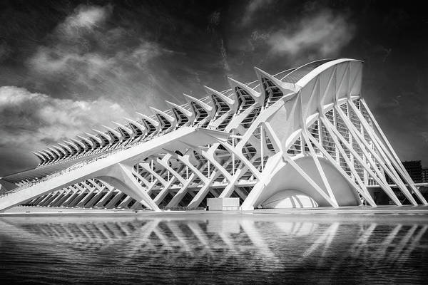 Arte Photograph - Modern Valencia In Black And White  by Carol Japp