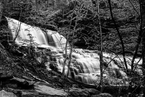 Photograph - Mohawk Falls - 8617 by G L Sarti