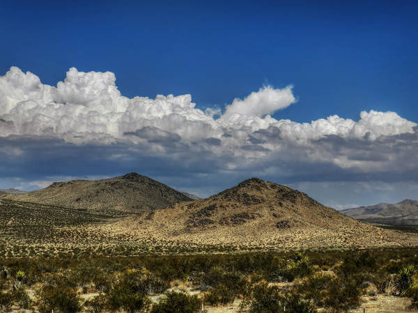 Photograph - Mojave 020 by Lance Vaughn