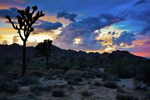 Photograph - Mojave Desert Sunset Sky by Kyle Hanson