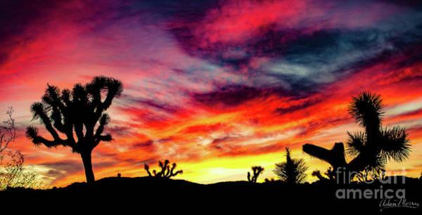 Mojave Sunset Art Print