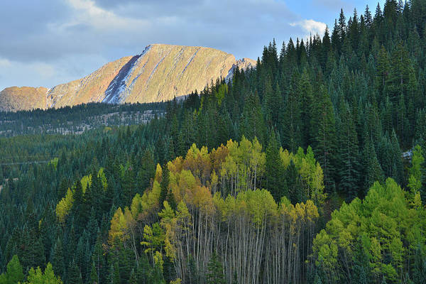 Photograph - Molas Pass Colorado In Fall by Ray Mathis