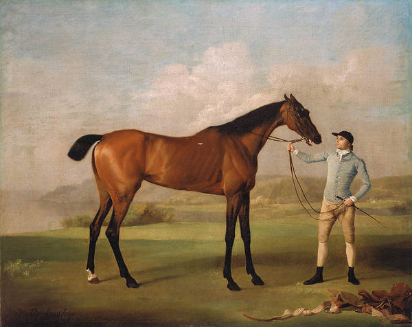 Wall Art - Painting - Molly Long Legs With Her Jockey 1761  by George Stubbs