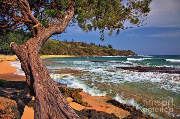 Photograph - Moloaa Beach On The Island Of Kauai, Hawaii, United States by Sam Antonio Photography