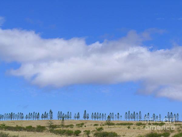 Norfolk Pine Wall Art - Photograph - Molokai Skyline by James Temple