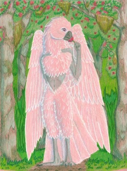 Furry Drawing - Moluccan Among Ohia by Amanda Gibbs