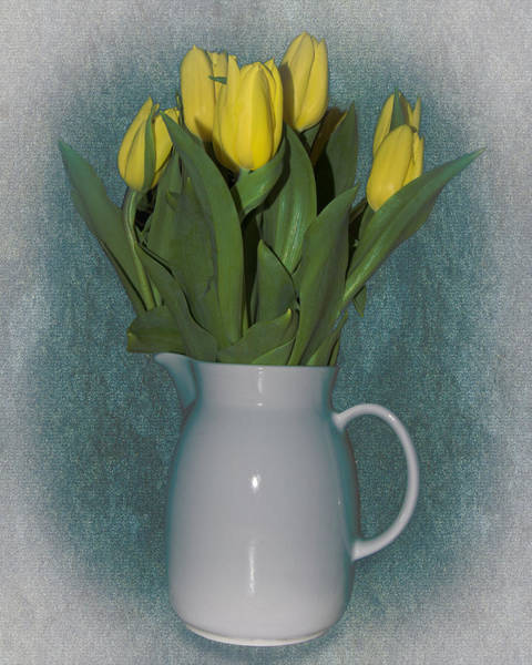 Photograph - Moms Tulips by William Havle
