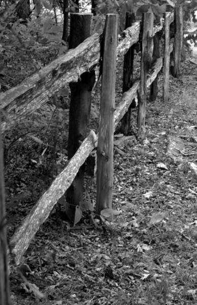 Photograph - Momvisitfence-carterlane by Curtis J Neeley Jr
