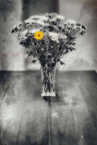 Accent Photograph - Mon Coeur Vous Appartient by Robert Hayton
