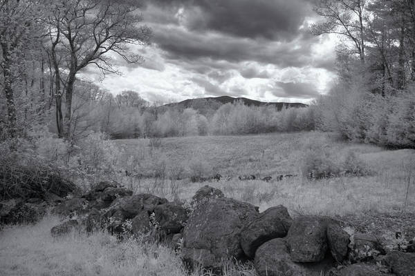 Photograph - Monadnock In Black And White by Tom Singleton