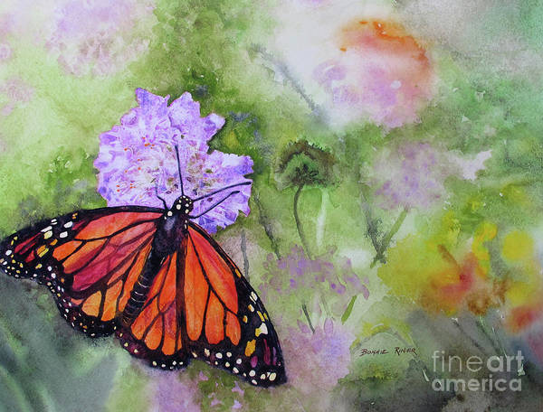 Monarch Painting - Monarch Butterfly by Bonnie Rinier