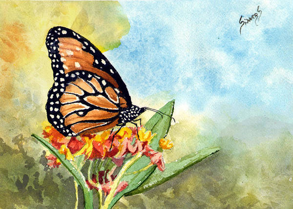 Painting - Monarch Butterfly by Sam Sidders