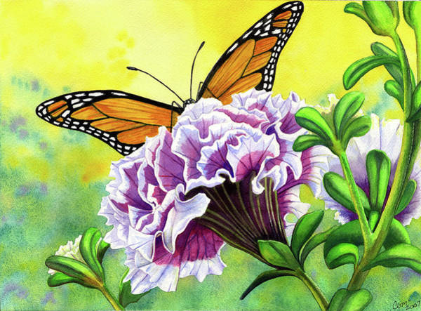 Painting - Monarch by Catherine G McElroy