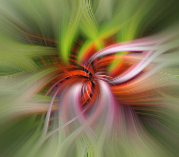 Digital Art - Monarch In Motion by Mark Myhaver