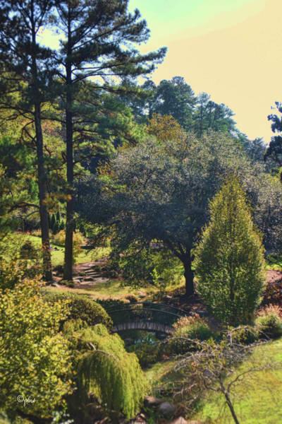 Photograph - Monet Autumn - Duke Gardens by Paulette B Wright
