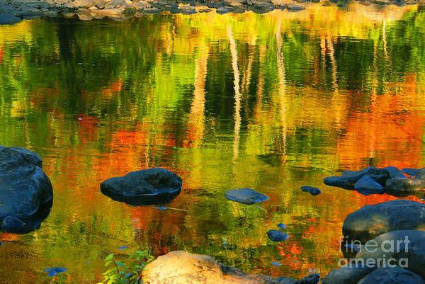 Aimelle Photograph - Monet Autumnal by Aimelle