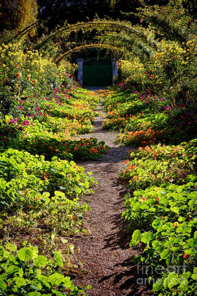 Giverny Photograph - Monet Garden Path  by Olivier Le Queinec