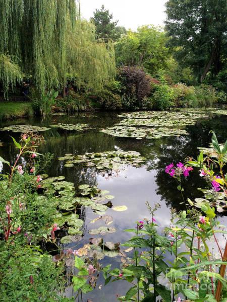 Claude Monet Photograph - Monets Garden, Giverny, France by Mary Beth Dimijian