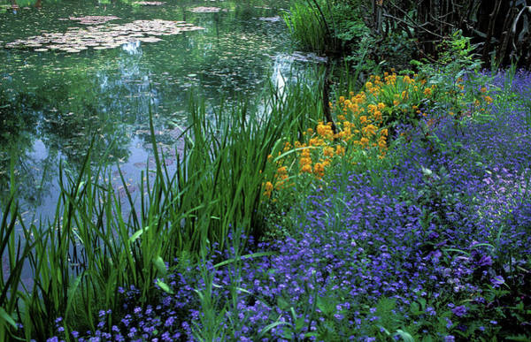 Giverny Photograph - Monet's Lily Pond by Kathy Yates