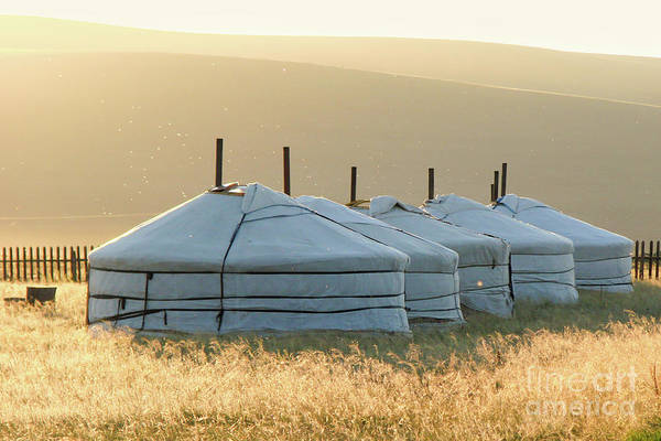 Nomad Photograph - Mongolia by Delphimages Photo Creations