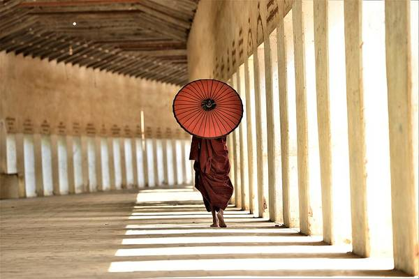 Buddhist Temple Wall Art - Photograph - Monk With Umbrella Walking In Th Light Passway by Gilad Fiskus