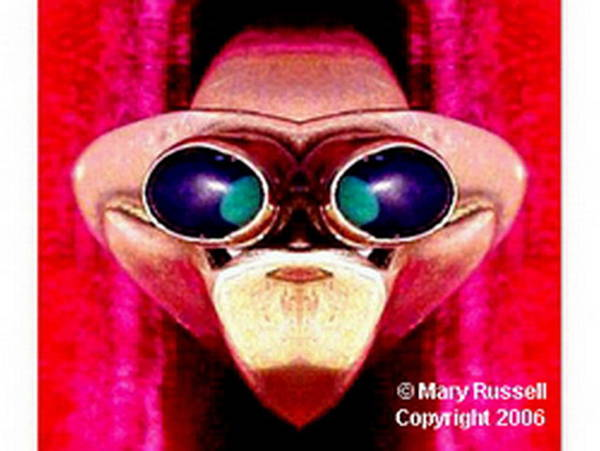 Digital Art - Monkey Business by Mary Russell