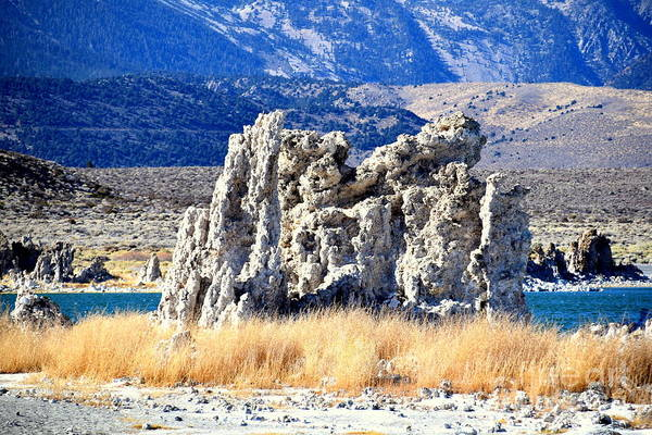 Wall Art - Photograph - Mono Lake California by Meeli Sonn