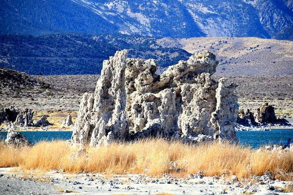 Wall Art - Photograph - Mono Lake II by Meeli Sonn