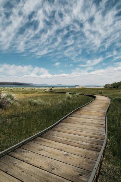 Photograph - Mono Lake by Lee Harland