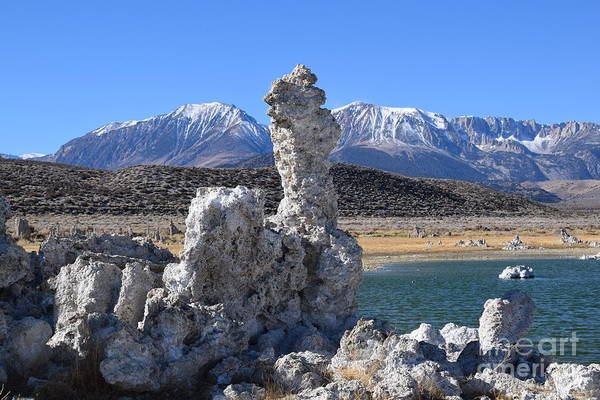 Wall Art - Photograph - Mono Lake by Meeli Sonn
