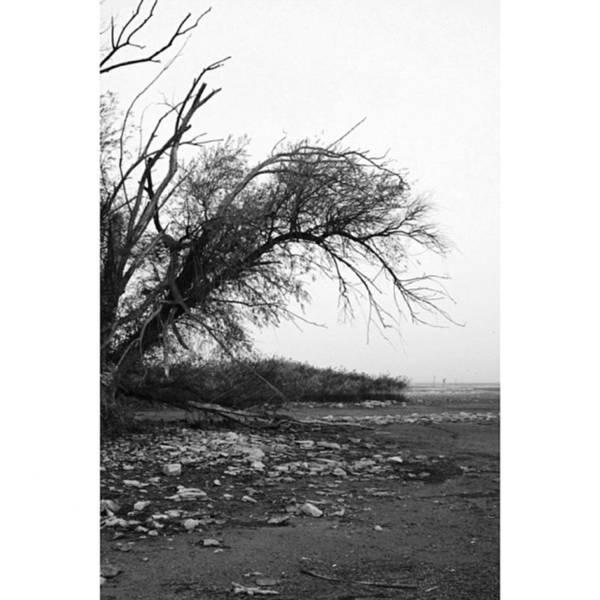 Monochrome Photograph - #monochrome #lake #landscape  #stausee by Mandy Tabatt