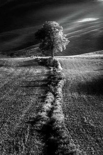 Photograph - Monochrome Valley by Matteo Viviani