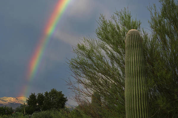 Photograph - Monsoon Rainbow by Dan McManus