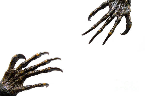 Lizards Digital Art - Monster Try To Grab Their Hand Together by Geek N Rock