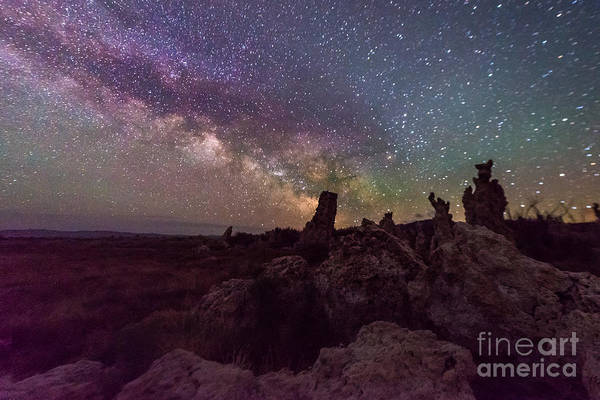 Photograph - Monsters At Mono Lake by Jim DeLillo
