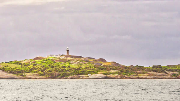 Photograph - Montague Island - Nsw - Australia by Steven Ralser